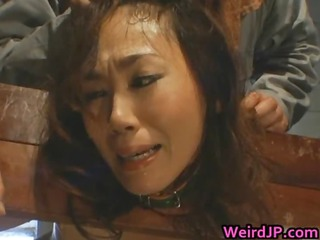 asian baby is held like an animal