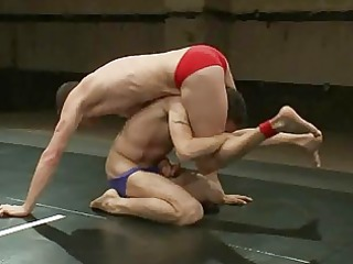 busty gay hunks like wrestling into ring as